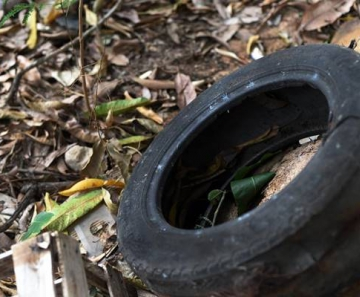 pneu lixo